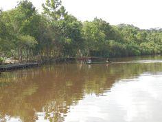 River, Kalimantan, Indonesia