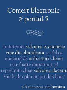 Pontul 5 (Analiza Afacerilor) - Efectul de Retea
