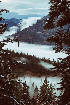 Les montagnes sous la brume.