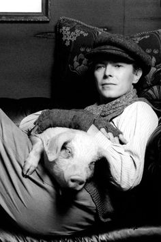 David Bowie has a pig!