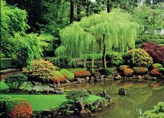Japanese Garden with a beautiful Pond - http://mostbeautifulgardens.com/japanese-garden-with-a-beautiful-pond/