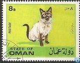 État d'Oman-chats