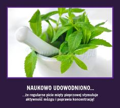POPRAW NATURALNIE SWOJĄ KONCENTRACJĘ! Alternative Therapies, Slow Food, Mother Nature, Fitness Inspiration, Health And Beauty, Life Hacks, Health Fitness, Herbs, Healthy