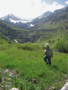 easy utah hike - stewart falls via ray's summit (take the ski lift)