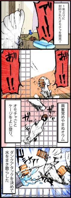 漫画「いたずらオウムの生活雑記」 (105) 封印されしオモチャが…… | ライフスタイル | マイナビニュース