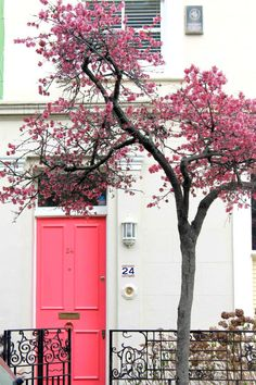 Pink door and blossoms in Notting Hill, London** Beautiful Homes, Beautiful Places, Beautiful London, The Doors, Front Doors, Front Door Colors, London House, Things To Do In London, Places Around The World