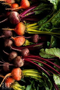 Eat Your Beets Food Photography Photo Print Wall by AmyRothPhotos, $15.00