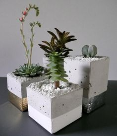"""Spotted via Feliz, a collection of cement planters wrapped in metal leaf from Austin, TX-based designer Joanna Wojtkowiak. To us, they scream """"holiday"""