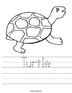 count turtle math math coloring pages coloring pages for kids. Black Bedroom Furniture Sets. Home Design Ideas
