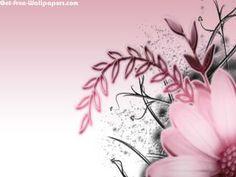 Free Pink Flower Wallpapers, Pink Flower Pictures, Pink Flower Photos, Pink Flower #11867 1680X1050 wallpaper