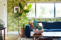 The couple tackled the apartment renovation themselves. Before the makeover, the apartment was drab, but it has since blossomed into a bright, jungle-inspired home that Austin and Alex love.