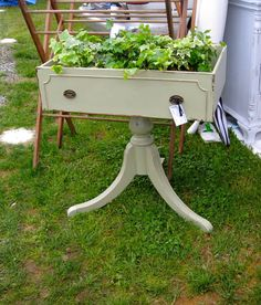 Cute idea for an old drawer. I would put a zinc liner inside to retard rot.
