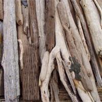 Technique du bois flotté : Sur la plage abandonnée, des morceaux de bois flottés. La technique pour les travailler est faite pour les vacances : facile.