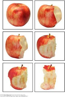 Sequencing Pictures, Story Sequencing, Sequencing Activities, Apple Unit, Apple Activities, Fall Preschool, Apple Seeds, Montessori Materials, Math For Kids