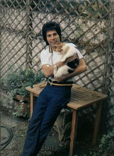 Rare photos of the man, the legend, Freddie Mercury Photos) : theCHIVE Queen Freddie Mercury, Celebrities With Cats, Celebs, Freddie Mercuri, Roger Taylor, We Will Rock You, Queen Band, Queen Queen, John Deacon