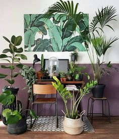 "9,140 Me gusta, 47 comentarios - Urban Jungle Bloggers™ (@urbanjungleblog) en Instagram: ""When your art matches your #plantgang :   :@bij_urs_thuis #urbanjunglebloggers"""