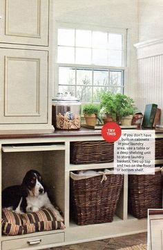 I love this idea for a basement! I could build out a nice cabinet that would look nice and hide the dog crates when they are not being used! Plus then the top portion could act as a laundry station!!! LOVE