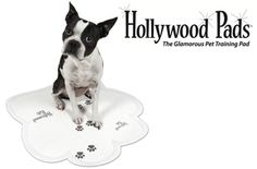 Super Absorbent, Stylish, Paw-Shaped Pee Pads by Hollywood Pads.  38% off + Free Shipping