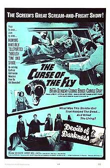Curse of the Fly is the second and final sequel to the 1958 version of The Fly. It was released in 1965, and unlike the other films in the series was produced in England.  This film was rarely seen for many years, as it was the only entry in the entire Fly film franchise that did not receive a videotape or laserdisc release. It did not receive its home video premiere until 2007, when it was released in a boxed set with the original series of films.