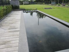 Best zwemvijver images garden pool in door and