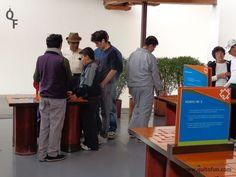 En el MIC las diferentes actividades permiten a niños, jóvenes, adultos y abuelitos divertirse y aprender