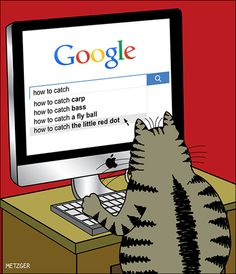 Google cat looks up how to catch little red dot....