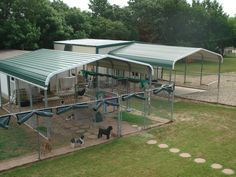 best dog boarding kennel building | in order to run one of the best dog boarding kennels in the north ...