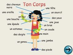 Les parties du corps - French Body Parts - A self-corrective Powerpoint