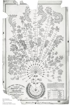 The first modern organization chart - McKinsey Quarterly. Daniel McCallum's 1854 organizational design for the New York and Erie Railroad resembles a tree rather than a pyramid. It empowered frontline managers by clarifying data flows. Organizational Design, Organizational Structure, Information Visualization, Data Visualization, Information Design, Information Graphics, Draw Tree, Best Science Books, Mind Maps