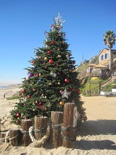 Crystal Cove holiday tree ceremony The lifeguard truck brings Santa down the beach. Kids love it!