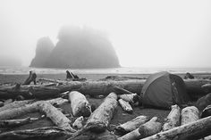 I think Paul and I camped behind that very log in that space on Second Beach, La Push, WA...good choice photographer and friends