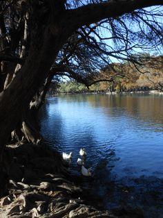 Camecuaro Lake, Tangancicuaro, Michoacan, Mexico.