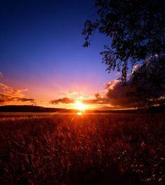 Sunset (46)