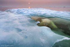 Winners of the Wildlife Photographer of the Year 2013 - My Modern Metropolis