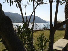 Skino Garden in Gioiosa Marea ( Messina) #Sicily