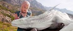 Znalezione obrazy dla zapytania got dragons
