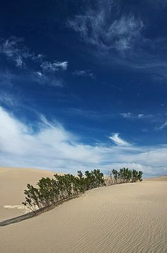 Desert Sky & Mesquite Flat Sand Dunes ~ Death Valley National Park, California