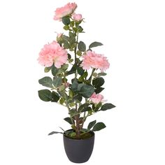 Ornamental - Briscoes | Briscoes NZ Jewelry Holder, Artificial Plants, Decorative Accessories, How To Apply, Ornaments, Simple, Shop, Fake Plants, Faux Plants