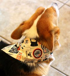 Dog tie-on bandana with Halloween icons and sayings on a white background! by PuppyPawzBoutique on Etsy