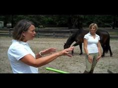 Equine Assisted Counseling |  MindStream Academy's Equine Assisted Counseling program with Ann O'Brien and Kendra Twitty, two of our EGALA certified counselors.
