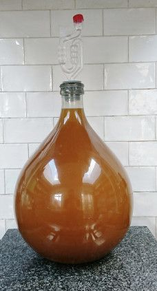 Elderflower wine in secondary fermentation Quince Wine Recipe, Elderflower Wine, All Spice Berries, Pickled Walnuts, Champagne Yeast, Blueberry Wine, Wine Yeast, Orange Wine, Strawberry Wine