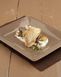 Culinaire Ambiance:Zeebrasem met paddenstoelen en mousseline van knolselder met roquefort