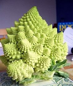 Romanesco Broccoli - Wouldn't this be striking set against the purple cauliflower?