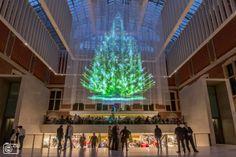 Rijksmuseum ontsteekt holografische kerstboom