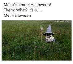 Me: It's almost Halloween! It's Jul. Me: Halloween - iFunny :) Dc Memes, Funny Memes, Funny Halloween Memes, Spooky Memes, Halloween Fun, Halloween Decorations, Funny Cute, Hilarious, Laser Tag