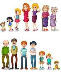 Images of Life Stages of Preschool People - Preschool Children Akctivitiys Learning Activities, Kids Learning, Activities For Kids, Kindergarten Crafts, Preschool Classroom, Human Life Cycle, Sequencing Pictures, Life Cycles, Kids Education