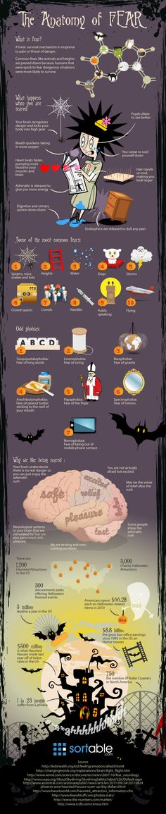 The Anatomy of Fear Infographic  Fun and visually interesting for kids.  Could be used to show that fear isn't all bad and can even be fun in context.