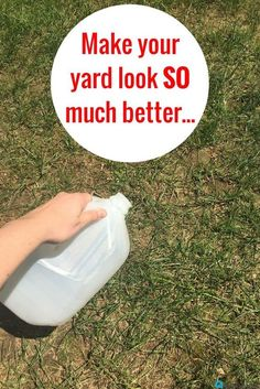 Do THIS to make your yard look so much better—and it only takes 5 minutes to do!