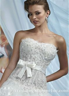 Wedding dresses i on pinterest pnina tornai vera wang for See through corset top wedding dress
