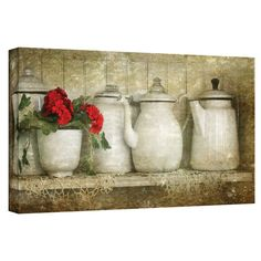 David Liam Kyle 'Flower with Pots' Gallery-Wrapped Canvas 24x48